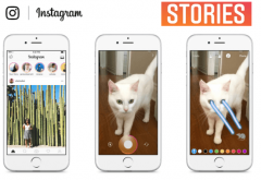 Photo for: How Can Wineries Leverage Instagram Stories?